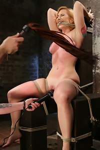 Suspension bondage, brutal corporal punishment, spanking, paddling, flogging, caning, bastinado, breath control, water boarding, and extreme orgasms.