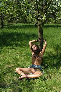 Vesna tied to an apple tree